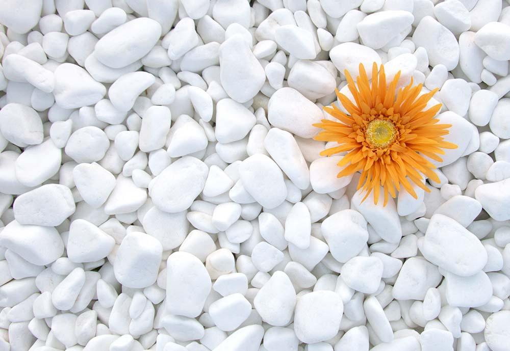 1580911023_pebbles_white-thasos.jpg